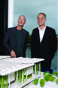 Herzog & de Meuron, Architects of 56 Leonard Tribeca Luxury Condominiums